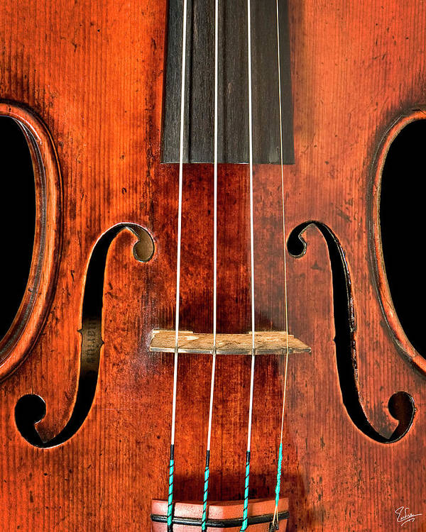 Strad Art Print featuring the photograph Beautiful F Holes by Endre Balogh