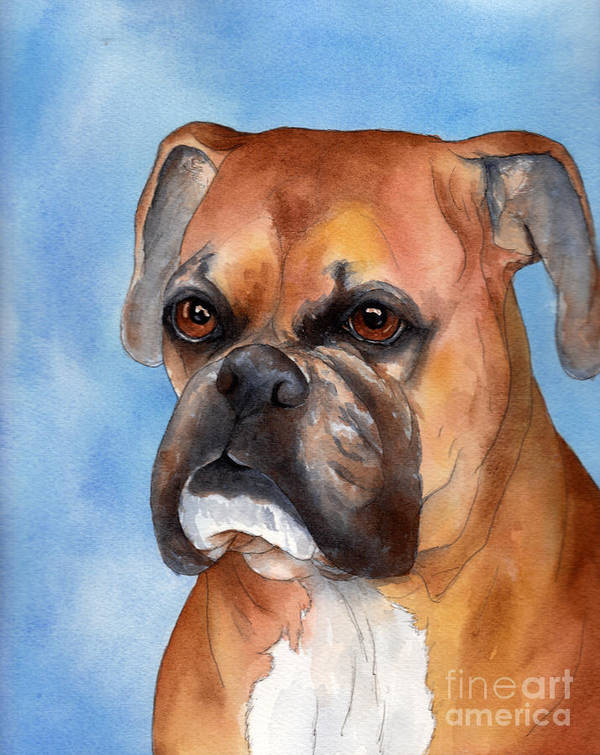 Boxer Art Print featuring the painting Boxer by Cherilynn Wood