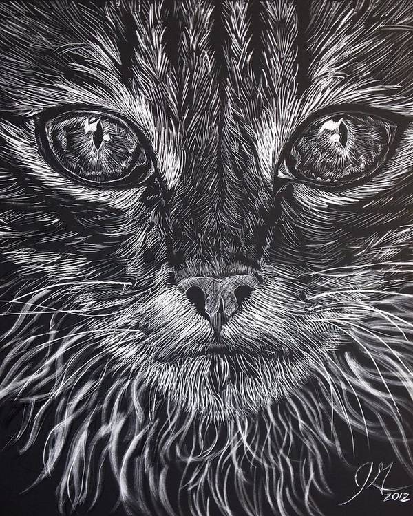 Cat Art Print featuring the drawing Cat Eyes by Jenny Greiner