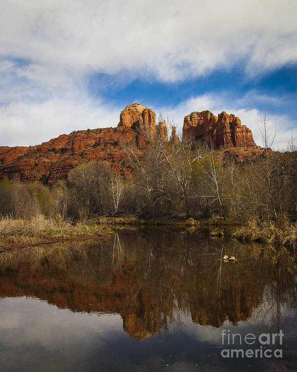 Cathedral Rock Art Print featuring the photograph Cathedral Rock Reflections Portrait 2 by Darcy Michaelchuk