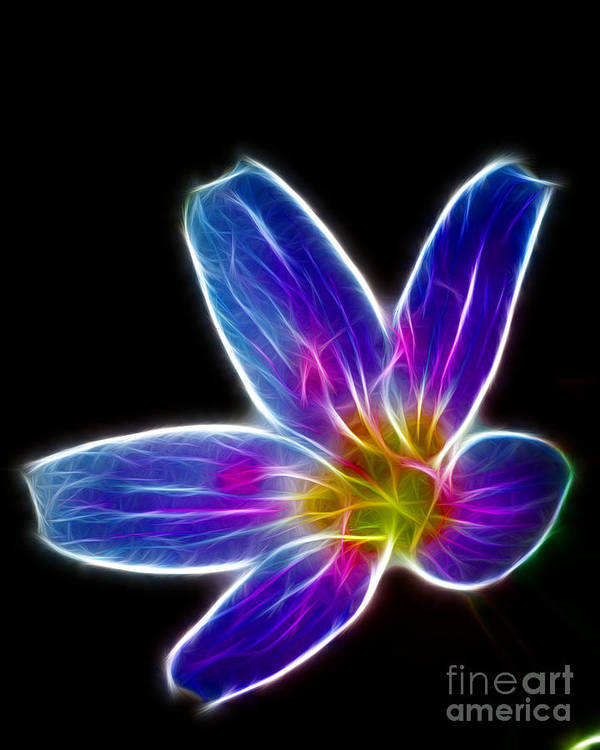 Flower - Electric Blue - Abstract Art Print featuring the photograph Flower - Electric Blue - Abstract by Paul Ward