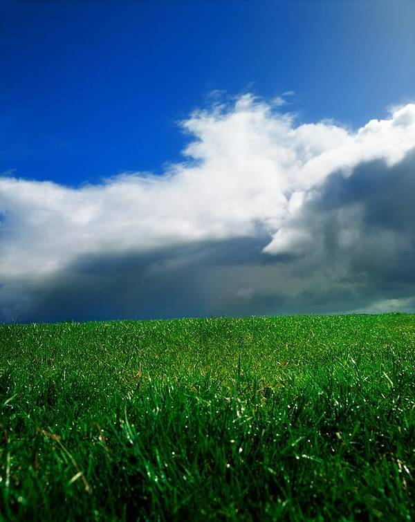 Blue Sky Art Print featuring the photograph Grassy Field, Ireland by The Irish Image Collection