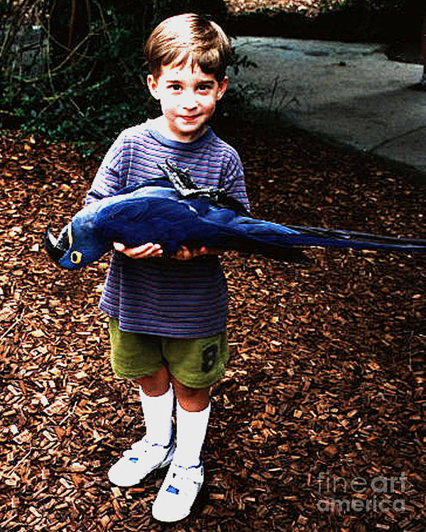 Bird Art Print featuring the photograph Michael And The Blue Macaw by Merton Allen