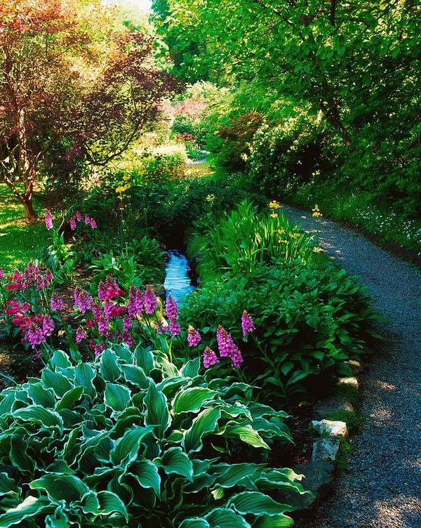 Day Art Print featuring the photograph Mount Usher Gardens, Co Wicklow by The Irish Image Collection