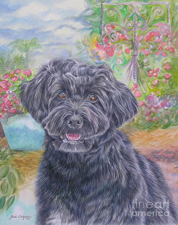 Portuguese Art Print featuring the painting Portuguese Water Dog by Gail Dolphin