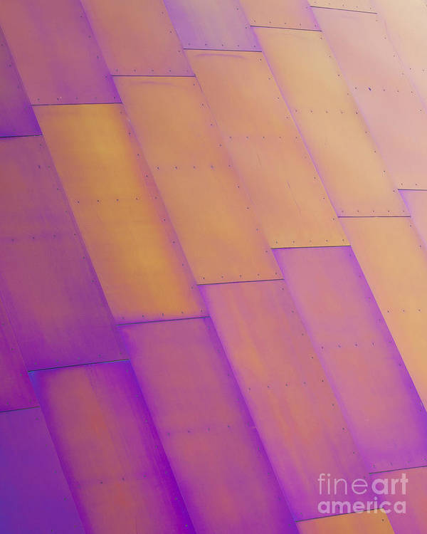 Purple Art Print featuring the photograph Purple Orange I by Chris Dutton