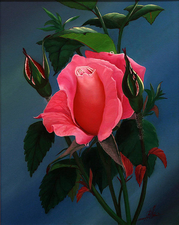 Rose Art Print featuring the painting Shades Of Beauty by Jacob Julian