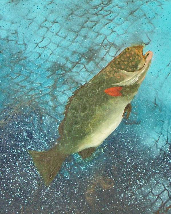 Grouper Fish Underwater Ocean Fishing Netting Art Print featuring the painting Underwater Grouper by Lynda McDonald