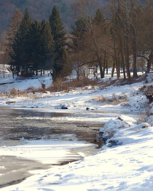 Nature Art Print featuring the photograph Winter Along The Delaware by Nicole DeVita