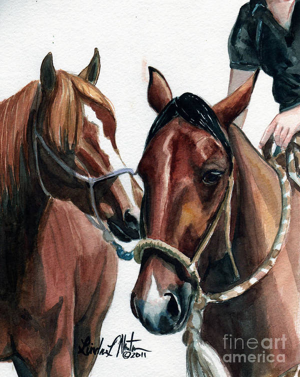 Wild Horse Art Print featuring the painting Overlapping by Linda L Martin