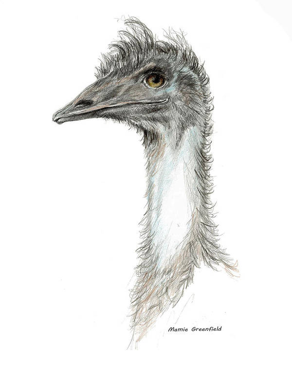 Ratite Art Print featuring the painting Bad Leroy Brown The Emu by Mamie Greenfield