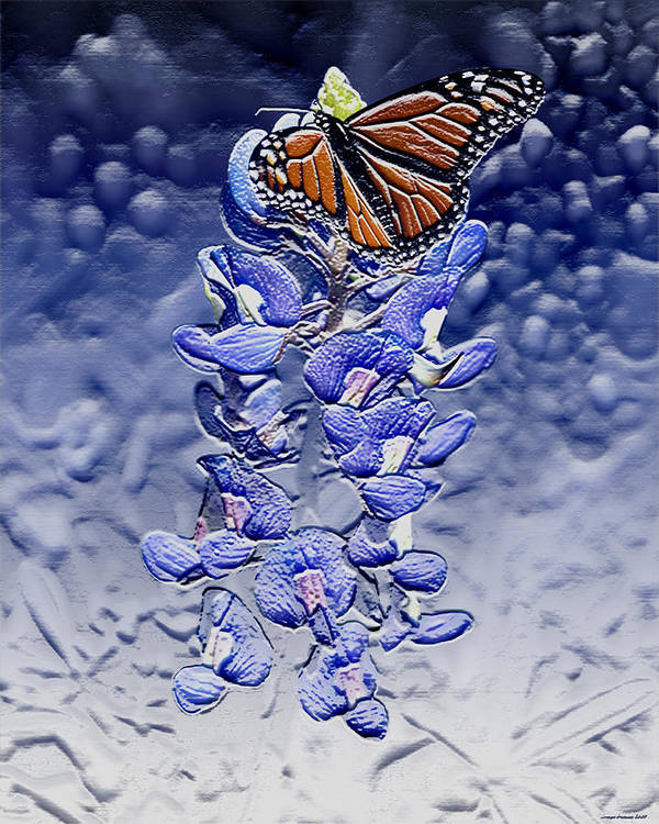 Butterfly Art Print featuring the digital art Monarch Butterfly by Evelyn Patrick