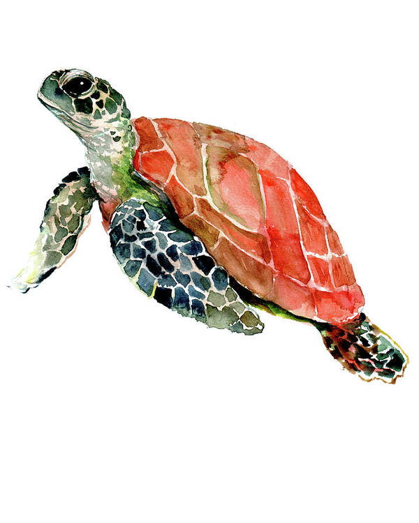 Sea Turtle Art Print featuring the painting Sea Turtle by Suren Nersisyan