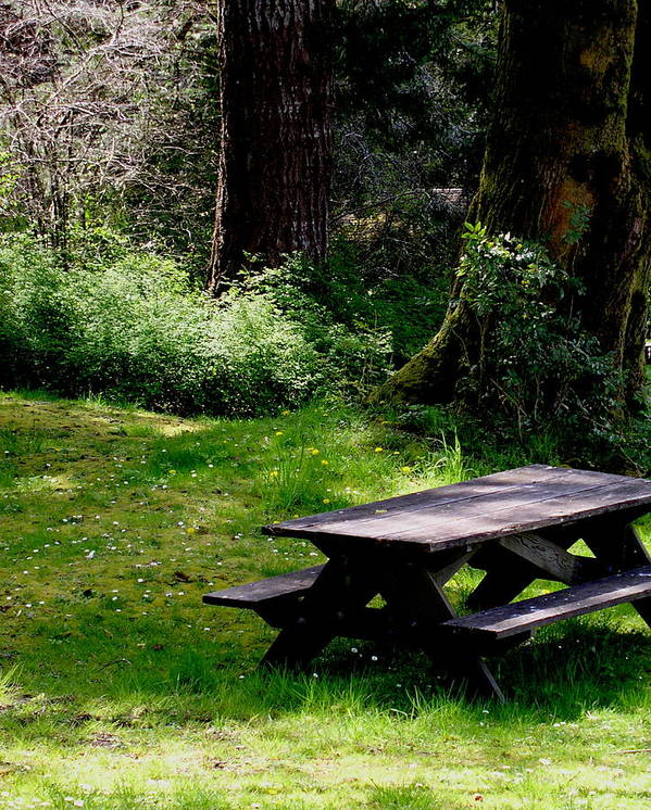 Picnic Table Art Print featuring the painting A Peaceful Place by Valerie Josi