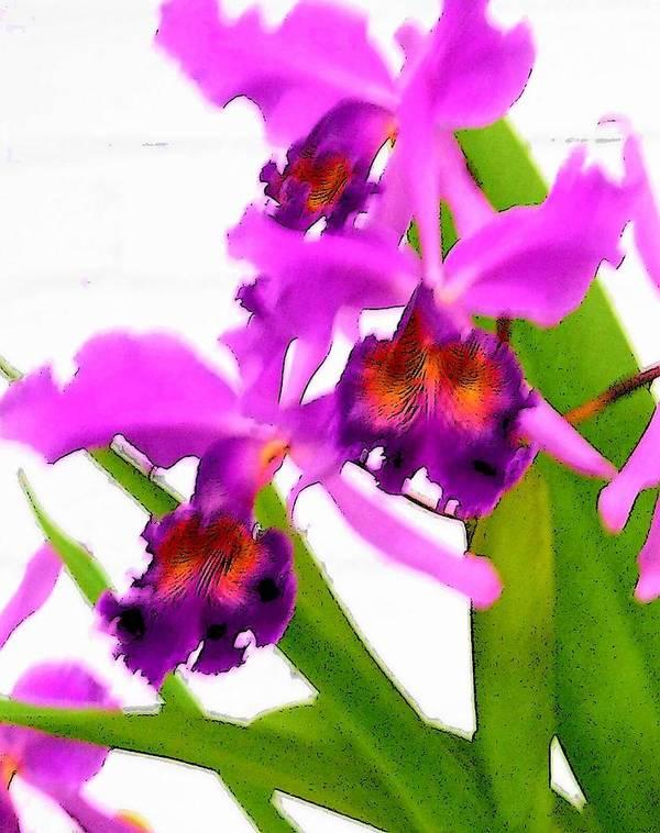 Flowers Art Print featuring the digital art Abstract Iris by Anita Burgermeister