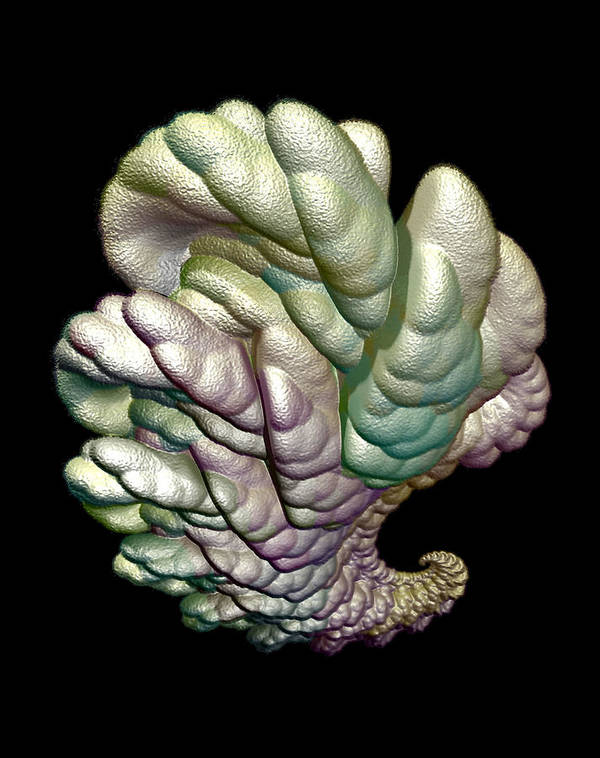 Fractal Art Print featuring the digital art Alien Brain by Frederic Durville