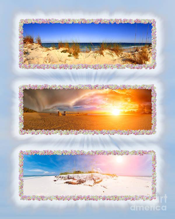 Anna Maria Island Art Print featuring the photograph Anna Maria Island Beach Collage by Rolf Bertram