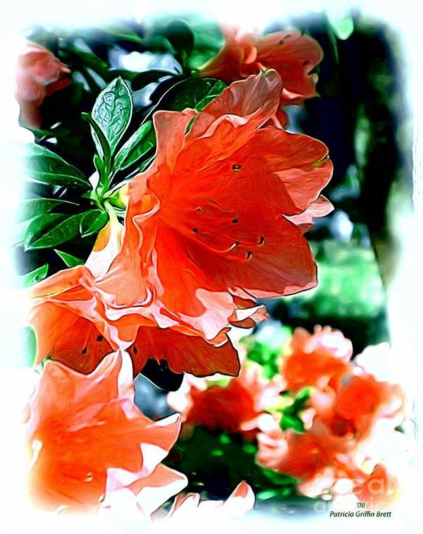 Fine Art Art Print featuring the painting Azaleas In The Spring by Patricia Griffin Brett