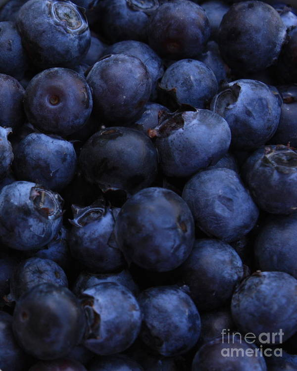 Blueberries Art Print featuring the photograph Blueberries Close-up - Vertical by Carol Groenen
