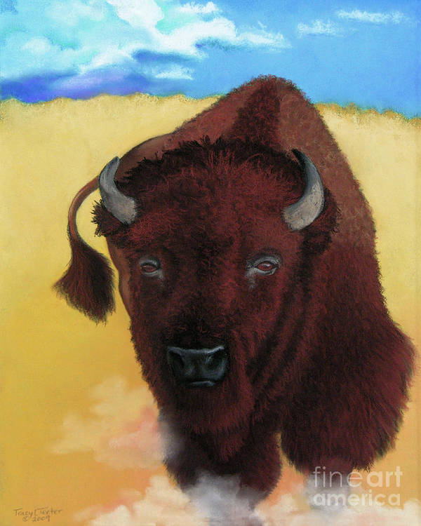 Buffalo Art Print featuring the pastel Born Of Thunder by Tracy L Teeter
