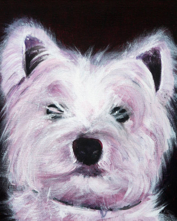Dog Art Print featuring the painting Cassie by Fiona Jack