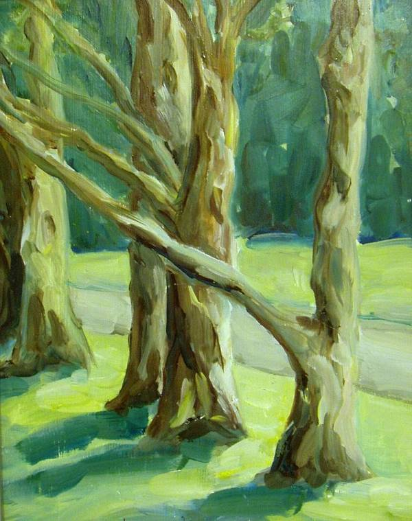 Trees Art Print featuring the painting Cedars In Woodward Park by Linda Vespasian