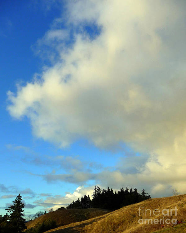 Clouds Art Print featuring the photograph Change In The Air by JoAnn SkyWatcher