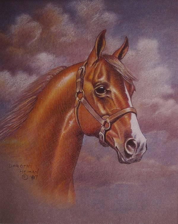Art Print featuring the painting Chestnut Quarter Horse by Dorothy Coatsworth