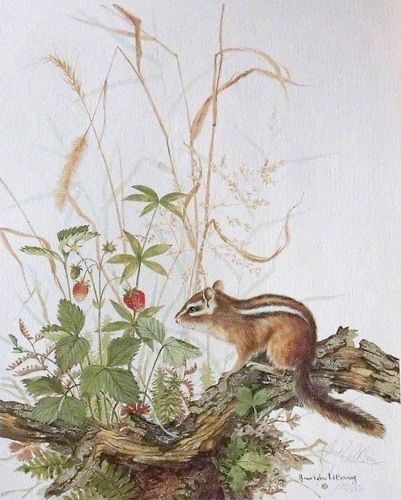 Limited Editions Art Print featuring the painting Chipmunk by Jean Pierre DeBernay