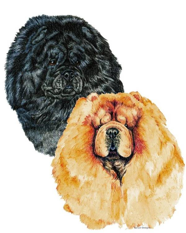 Chow Chow Art Print featuring the painting Chow Chows by Kathleen Sepulveda