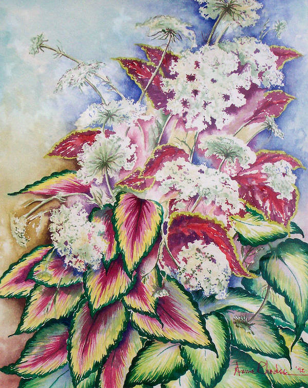 Floral Art Print featuring the painting Coleus And Queen Anne by Anne Rhodes