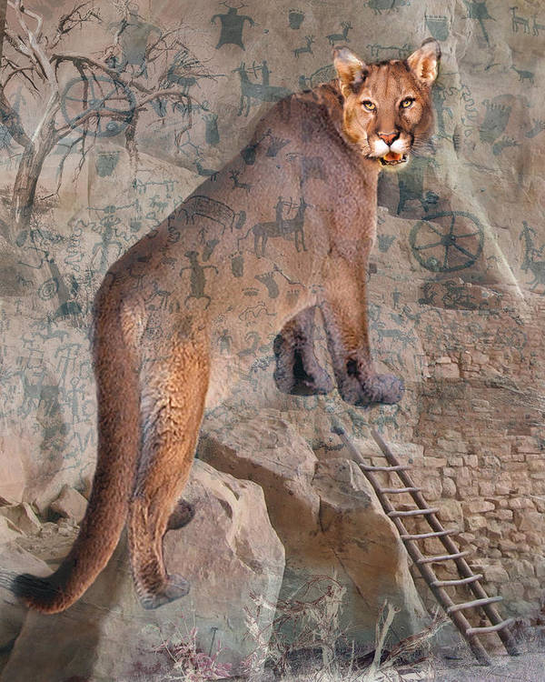 Cougar Art Print featuring the photograph Cougar Rocks, Southwest Mountain Lion by Karla Beatty