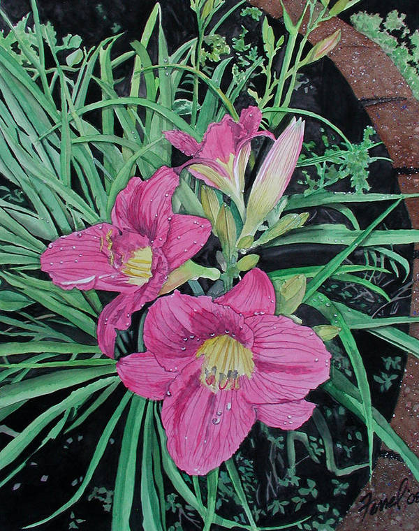 Day Lily Art Print featuring the painting Day Llily by Ferrel Cordle