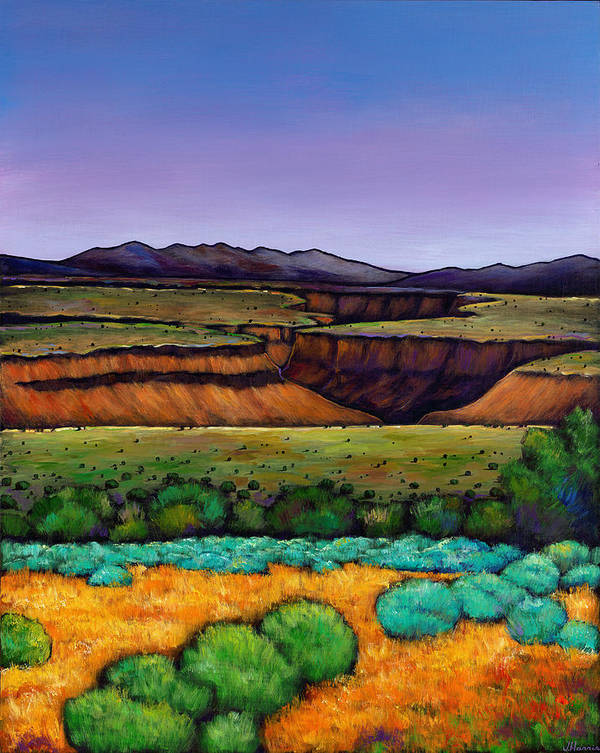 Landscape Art Print featuring the painting Desert Gorge by Johnathan Harris
