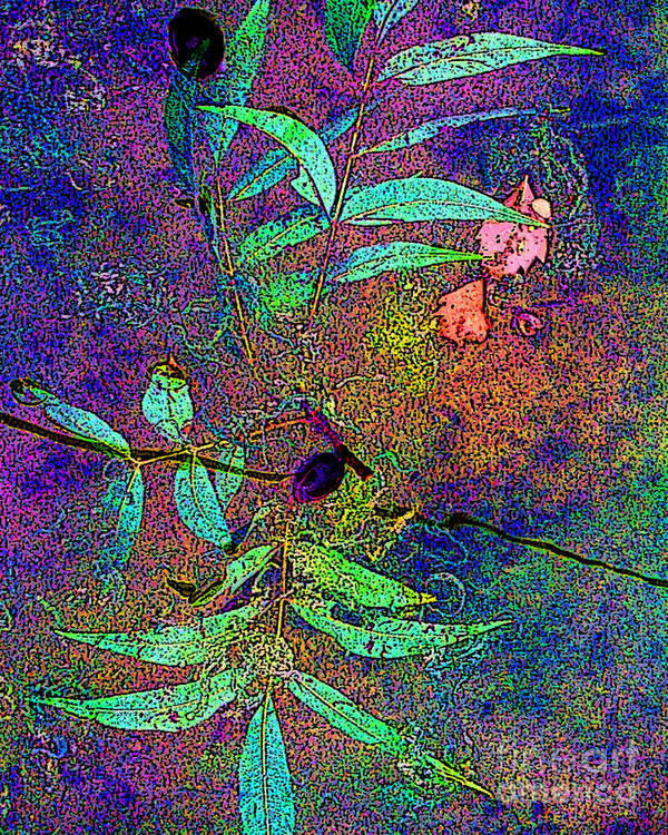Leaves Art Print featuring the photograph Floating Summer Leaves by David Carter
