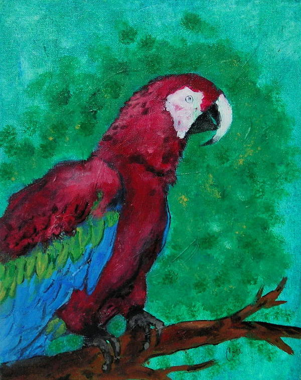 Parrot Art Print featuring the painting Flying Colors by Cori Solomon