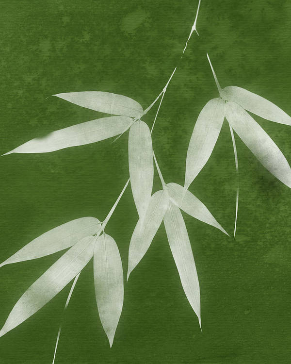 Bamboo Art Print featuring the mixed media Green Bamboo 1-art By Linda Woods by Linda Woods