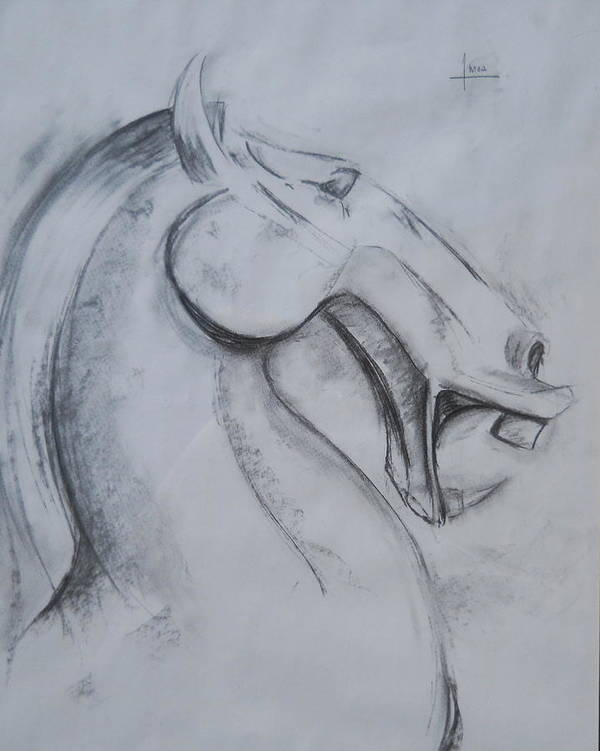 Horse Art Print featuring the drawing Horse Face by Victor Amor