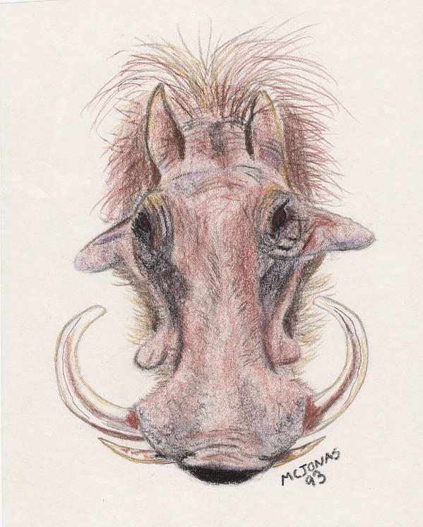 Warthog Art Print featuring the drawing Just Another Pretty Face by Marqueta Graham