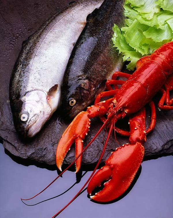 Arranged Art Print featuring the photograph Lobster And Trout by The Irish Image Collection