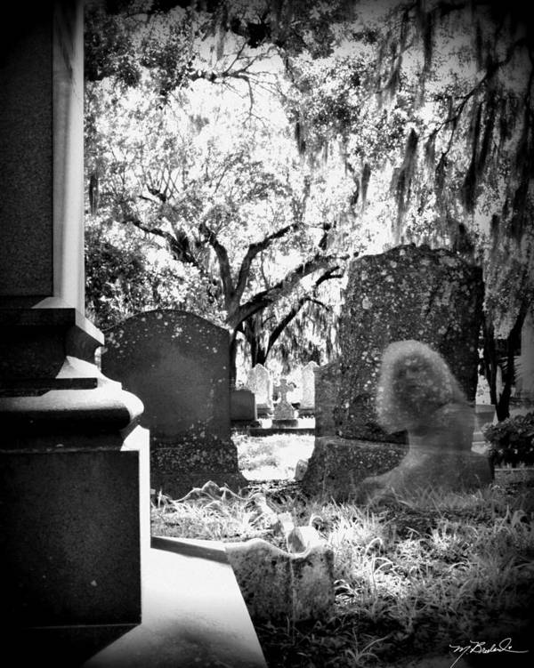 Magnolia Cemetery Art Print featuring the photograph Magnolia Cemetery 75 by Melissa Wyatt