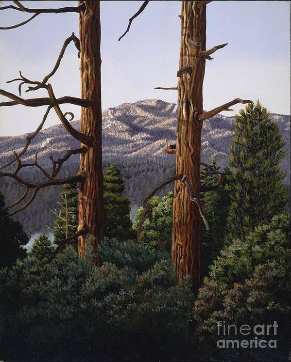Landscape Painting Art Print featuring the painting Marion Mountain At Sun Set by Jiji Lee