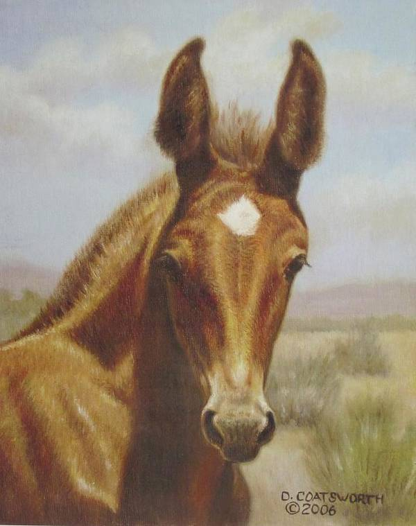 Art Print featuring the painting Molly Mule Foal by Dorothy Coatsworth