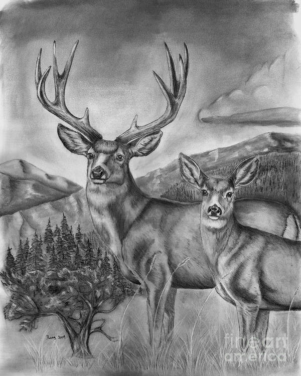 Wildlife Art Print featuring the drawing Mule Deer Heaven by Russ Smith