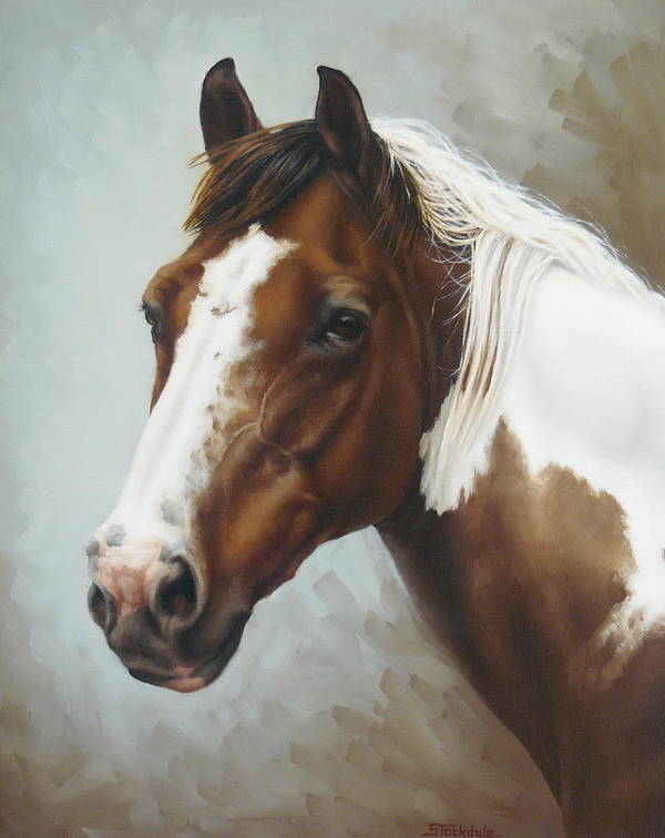 Equine Art Print featuring the painting Paint Portrait by Margaret Stockdale