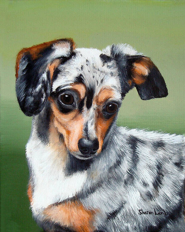 Mixed Breed Dog Cat Horse Commissioned Pet Portrait Art Print featuring the painting Pet Portrait Painting Commission Any Animal by Sharon Lamb