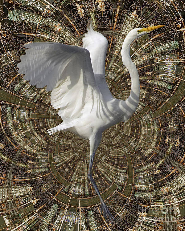 Bird Art Print featuring the digital art Phoenix Rising by Chuck Brittenham