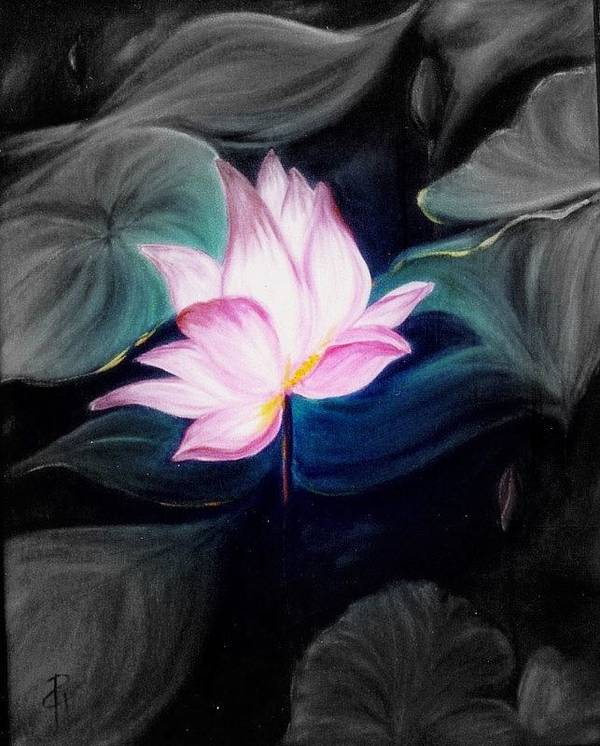 Lotus Art Print featuring the painting Pink Lotus by Dina Holland