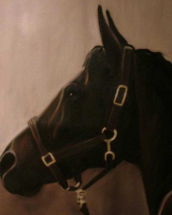 Horse Art Print featuring the painting Pocketchange by Donna Thomas