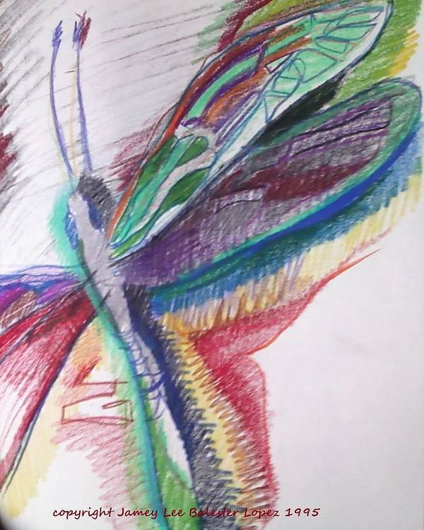 Dragonfly Drawings Art Print featuring the drawing Rainbow Dragonfly by Jamey Balester